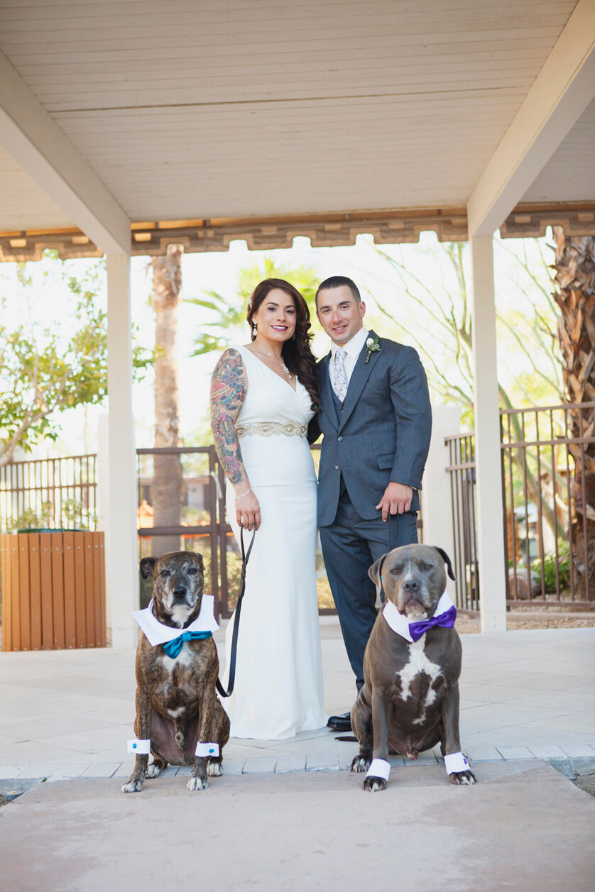 Dogs are part of the bridal party