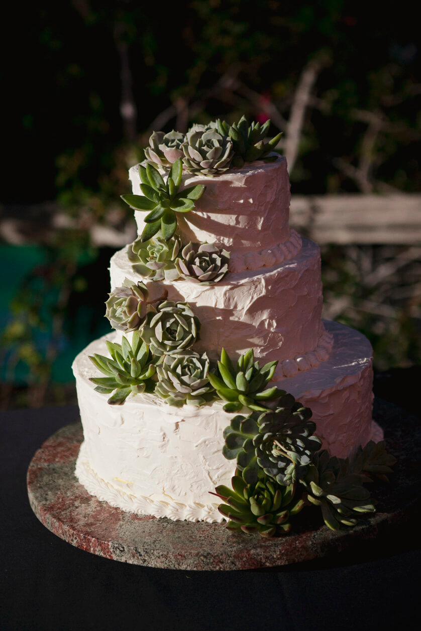 Wedding Cake, Palm Springs California