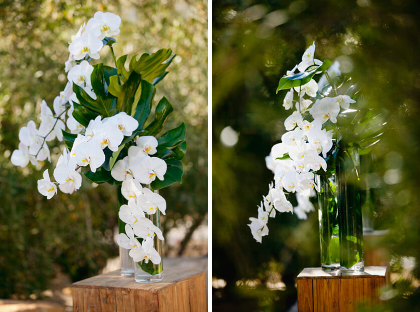Artisan Events, Orchids, White Orchids, simple, elegant