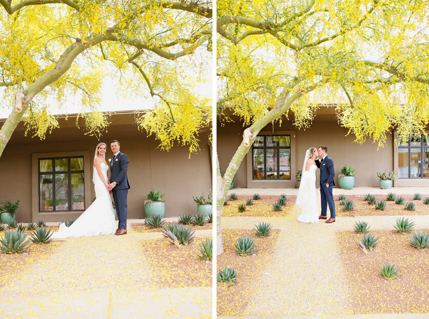 Couples portraits under the yellow blooms of a Palo Verde tree